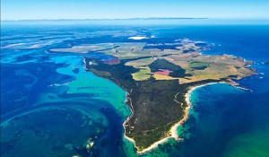 052.-Cape-Grim-from-the-air-Tas-Peter-Bellingham