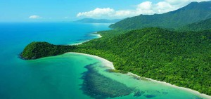 cape-tribulation-feature-image