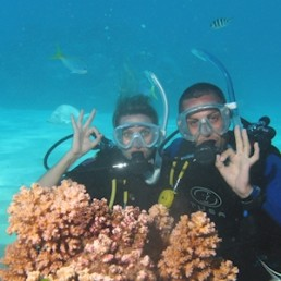 Silverswift Barrier Reef Cruise + Intro Dive
