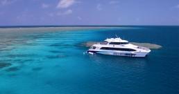 Silverswift Barrier Reef Cruise + Certified Dive