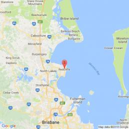 Brisbane Whale Watching Whale Watching – Premium