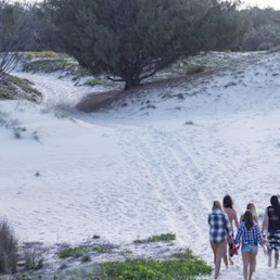 Gold Coast Camping Adventures Island Adventure Tour